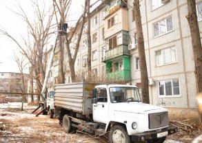 У детского сада №134 ликвидируют аварийные деревья