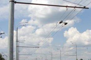 Незаконно установленные конструкции на опорах контактной сети МУ АТП будут демонтированы