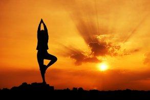 В воскресенье – День йоги в парке «Аркадия»